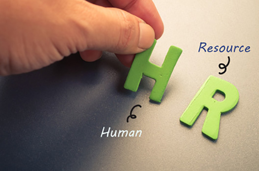 Human Resource Assistance